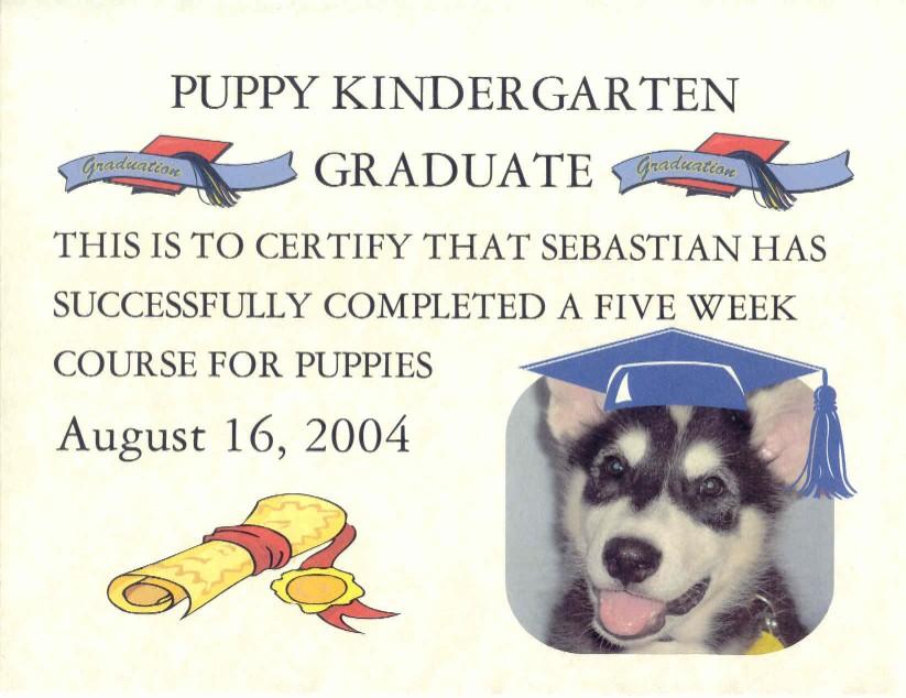 Sebastian Graduation Certificate